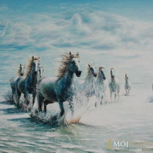 obraz-konie