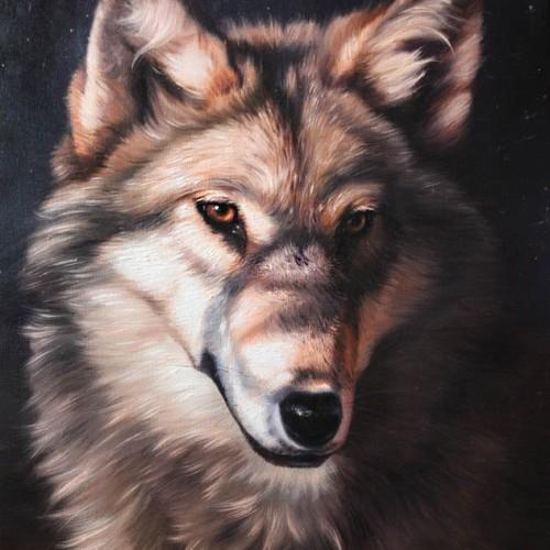 obraz-olejny-wilk