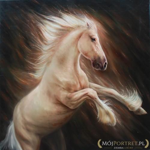 koń biały obraz olejny