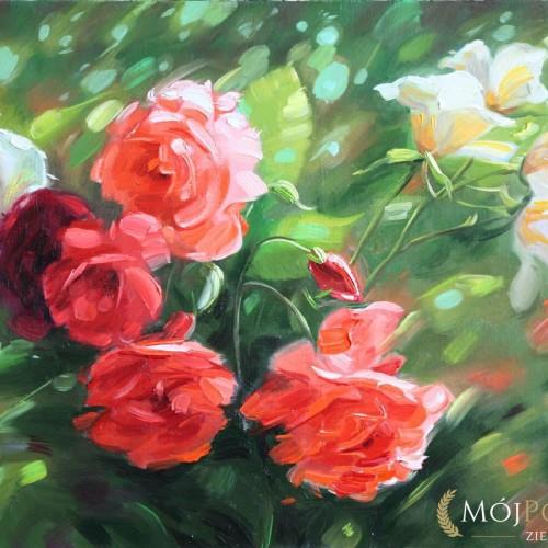 róże obraz olejny